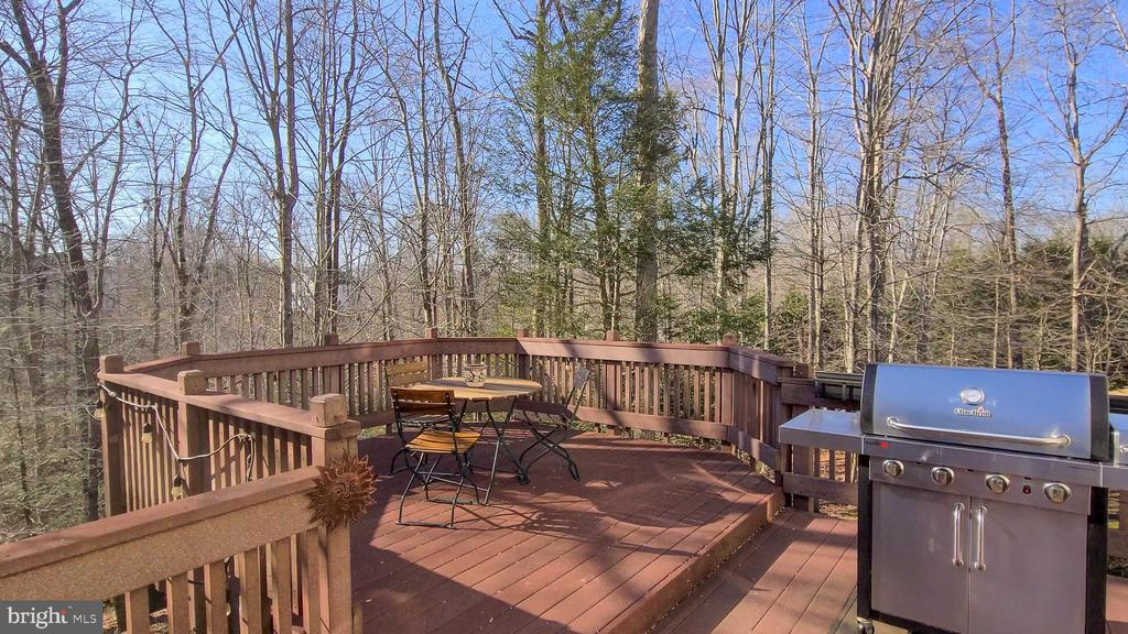 Enjoy dining outside in total privacy - 11322 SCOTT PETERS CT, MANASSAS