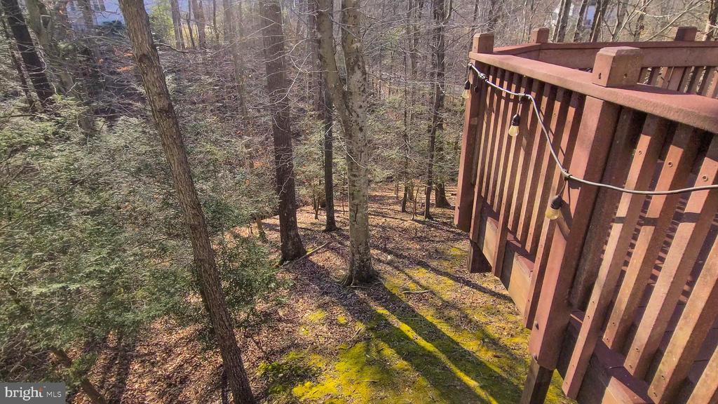 Backs to mature hardwood trees - 11322 SCOTT PETERS CT, MANASSAS