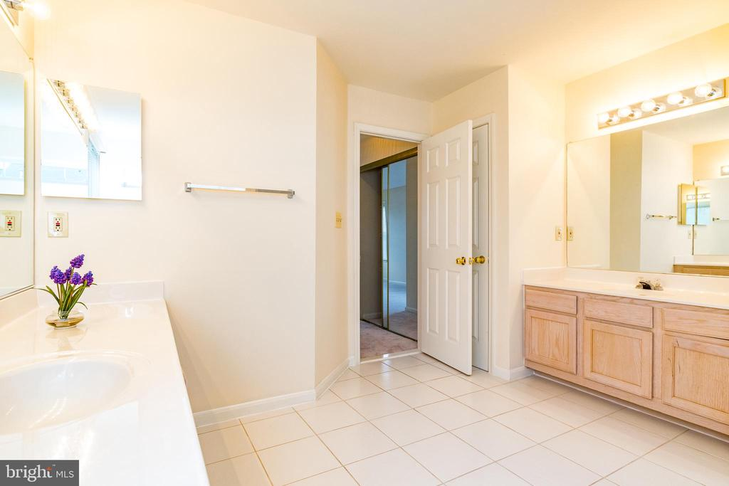 Amazingly large bath with separate shower - 22909 ADELPHI TER, STERLING