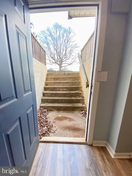 Walk out/up from the basement into the back yard - 10809 WISE CT, SPOTSYLVANIA