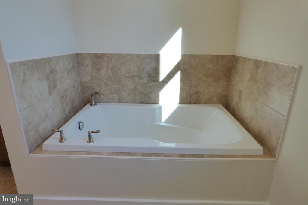 Primary Soaking Tub - 1066 LAKEVIEW DR, STAFFORD