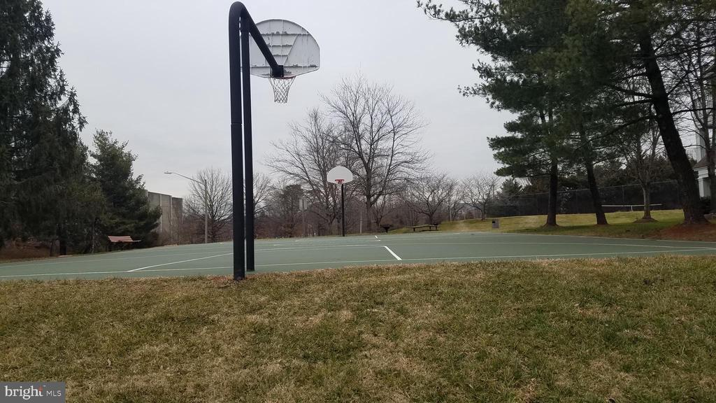 Basketball Court - 5624 WILLOUGHBY NEWTON DR #11, CENTREVILLE