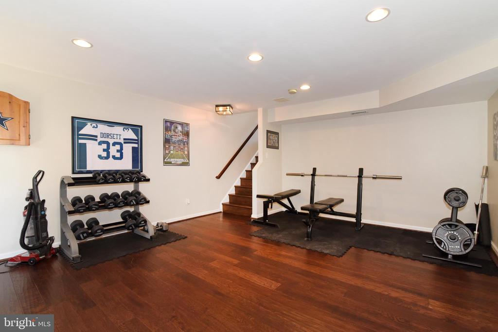 LOWER LEVEL REC ROOM - 42717 COOL BREEZE SQ, LEESBURG
