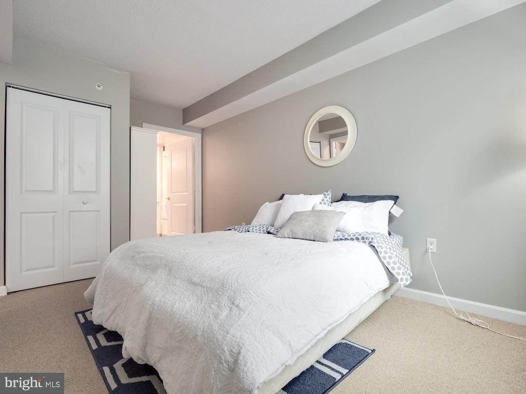 Large primary bedroom - 880 N POLLARD ST #201, ARLINGTON