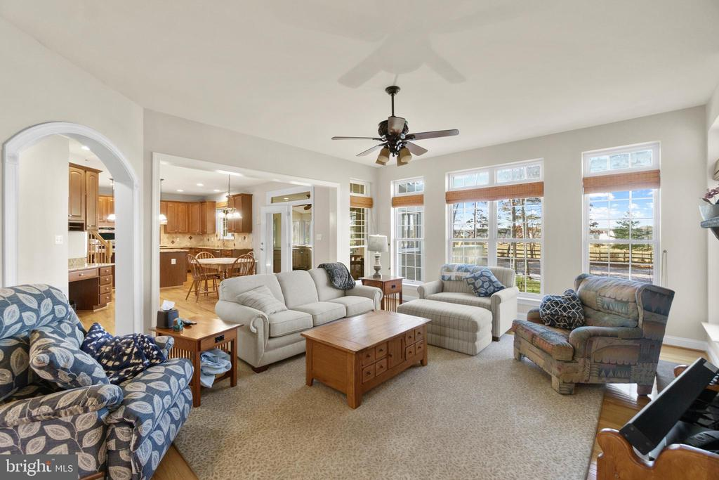 Luxurious Sunken Family Room - 11208 BLUFFS VW, SPOTSYLVANIA