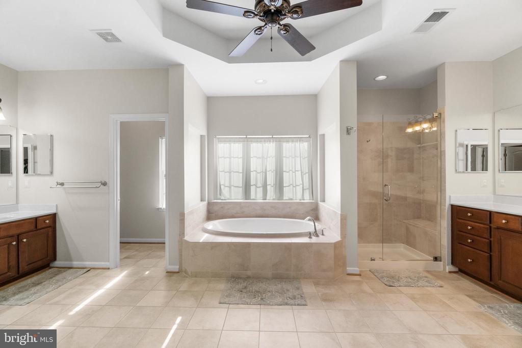 Luxurious Spa Master Bath - 11208 BLUFFS VW, SPOTSYLVANIA