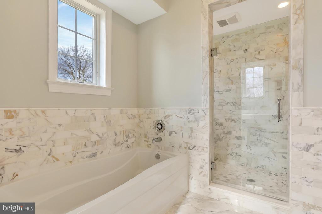 Separate Shower & Tub - 20131 DAIRY LN, STERLING
