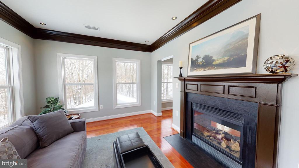 Two-sided fireplace in owner's suite - 206 GREENHOW CT SE, LEESBURG