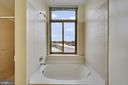 Primary Bath - 3650 S GLEBE RD #267, ARLINGTON