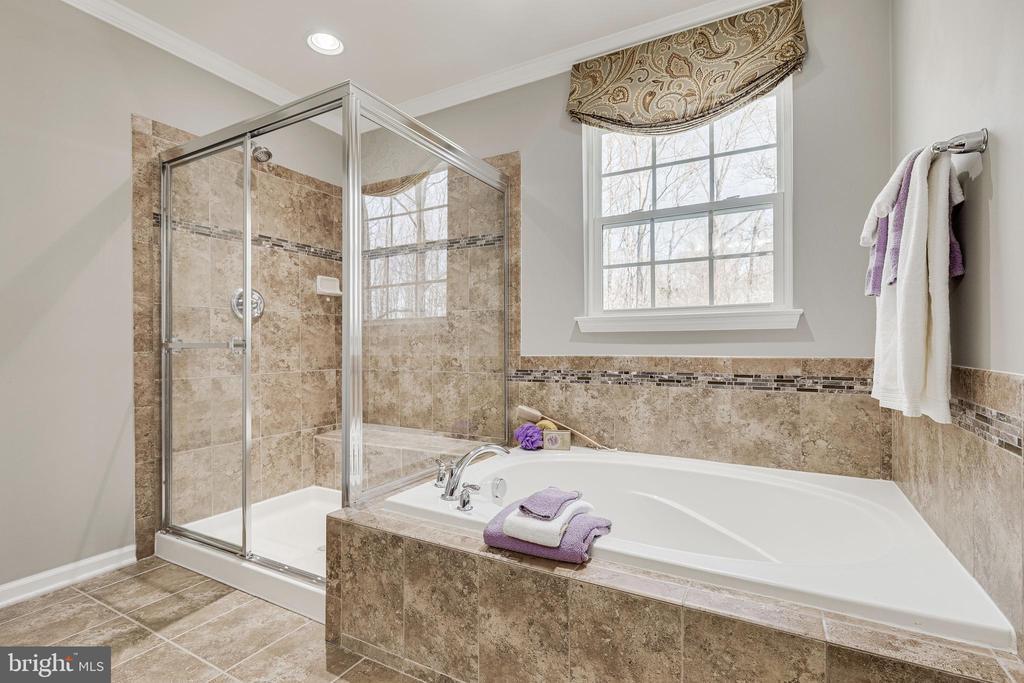 Soaking Tub and Sep Shower - 8353 LONGFIELDS LN, ALEXANDRIA