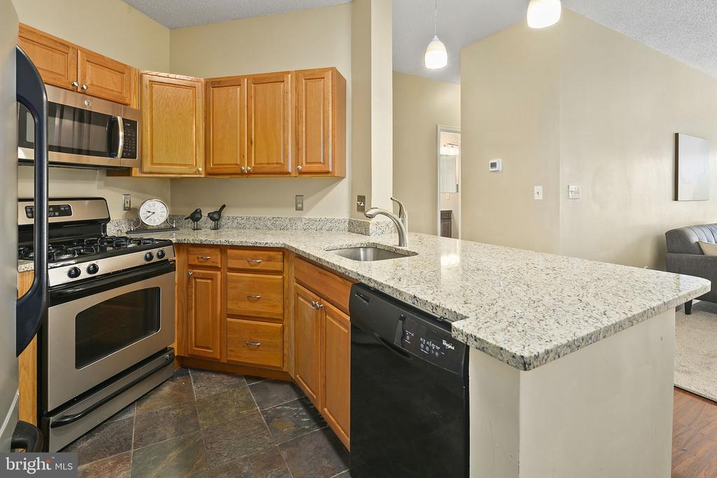 Remodeled Kitchen Opens to - 14305 CLIMBING ROSE WAY #205, CENTREVILLE