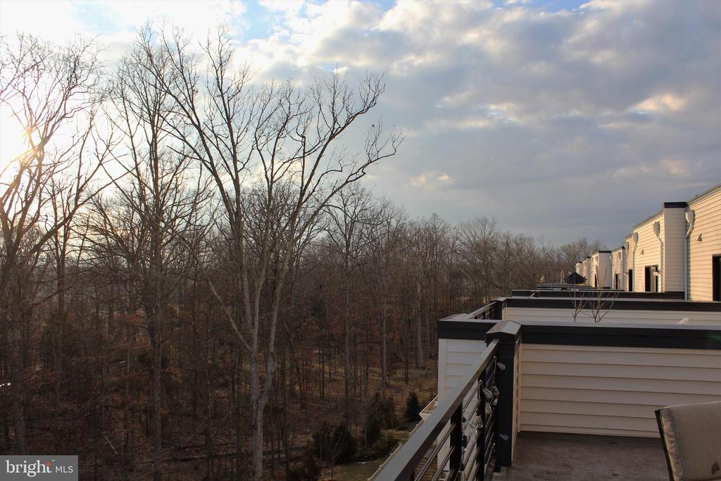 Rooftop View - 42502 MILDRED LANDING SQ, ASHBURN