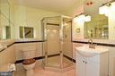 Lower Level Bathroom - 5203 GLEN MEADOW RD, CENTREVILLE