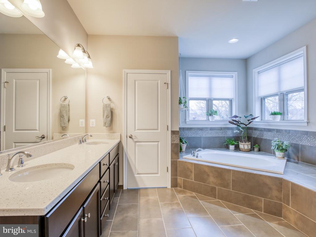 Master Suite Luxury Bath - 17260 CREEKSIDE GREEN PL, ROUND HILL