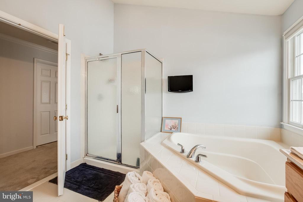 Master Bath- Bath Shower combo - 903 CRESTVIEW TER, WINCHESTER