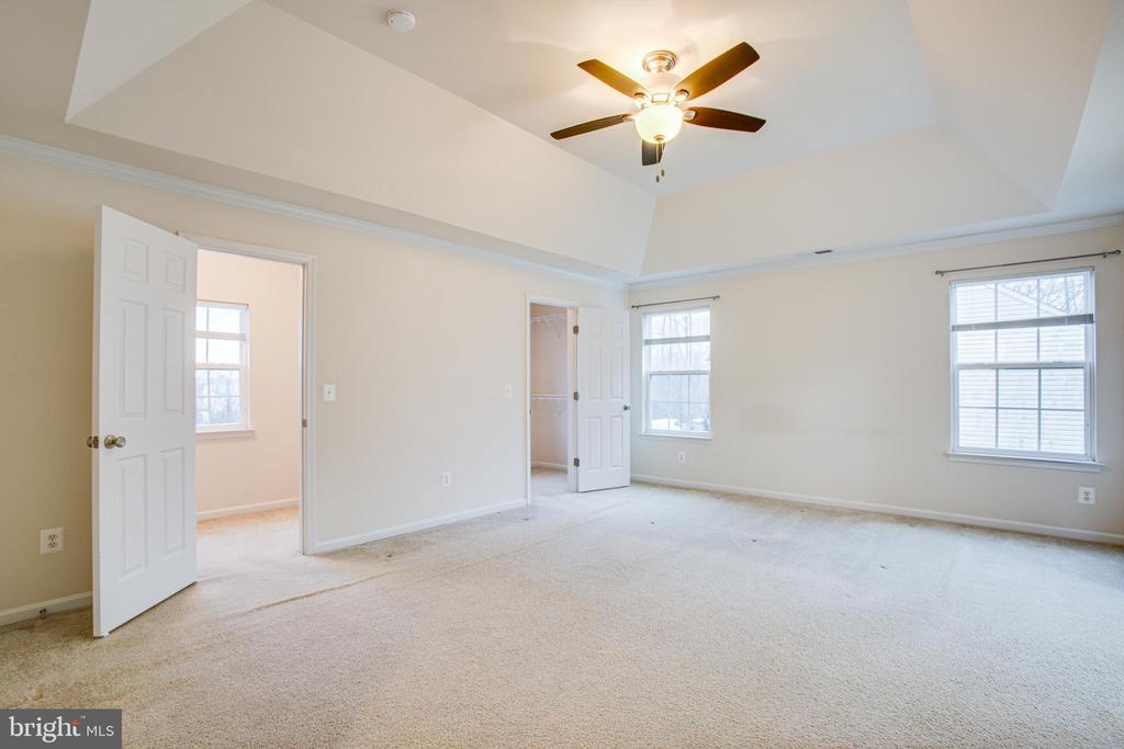 Master suite w/tray ceilings! - 1002 JONS PL, FREDERICKSBURG