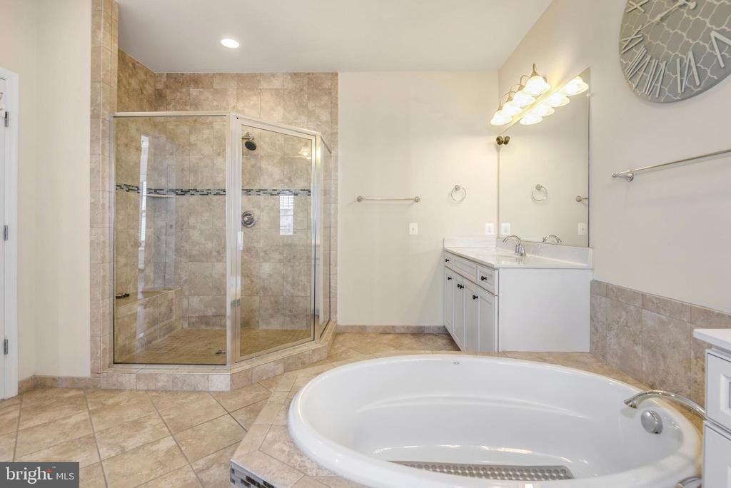 Separate spacious shower along w/ the soaking tub - 42594 DREAMWEAVER DR, ASHBURN
