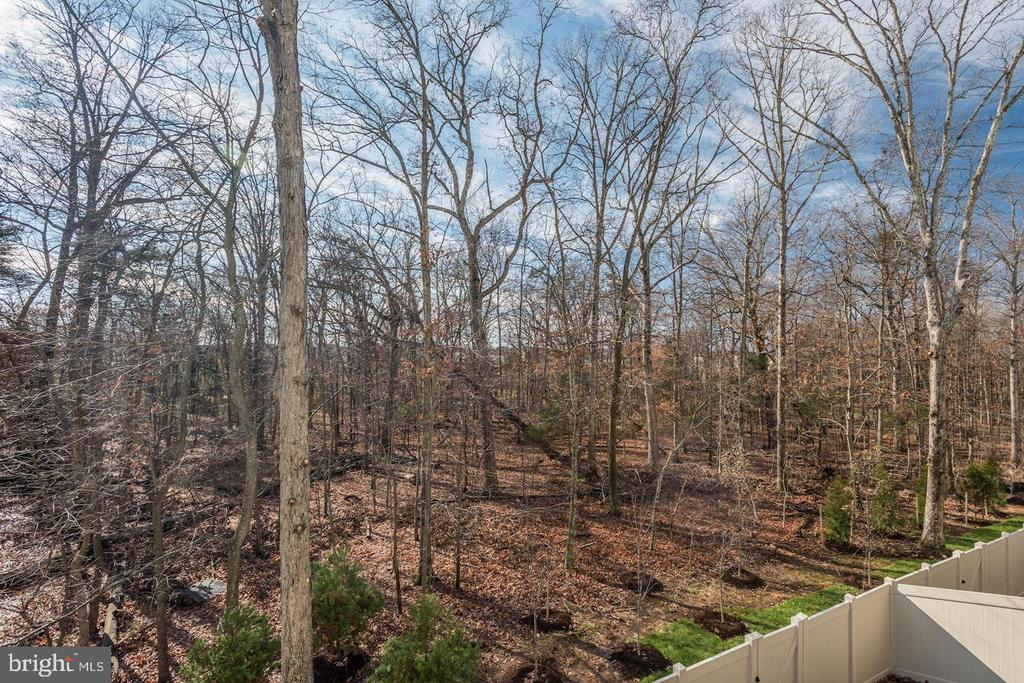 Views From Deck - 42502 MILDRED LANDING SQ, ASHBURN