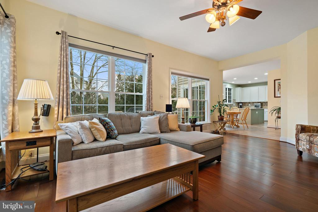 Family Room - 18279 MAPLE SPRING CT, LEESBURG