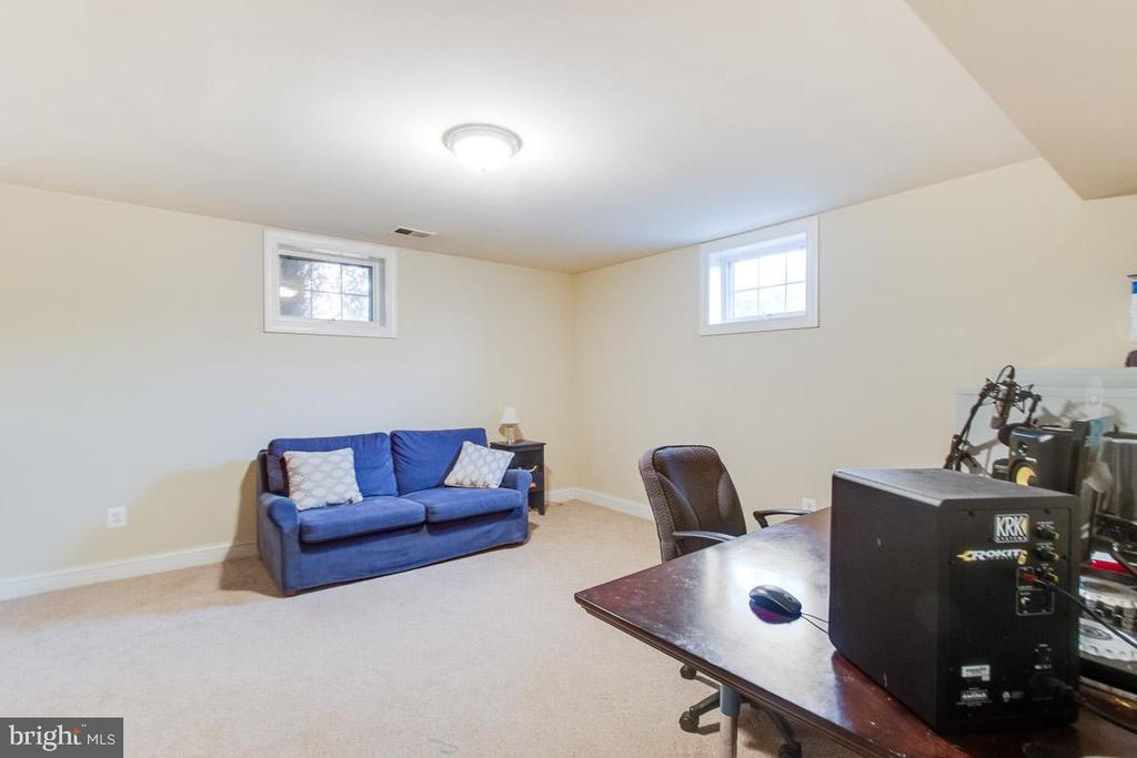 Lower level den - 20277 DAWSON MILL PL, LEESBURG
