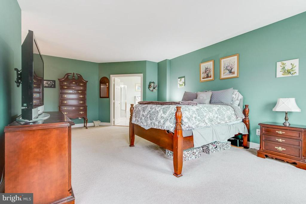 Spacious master level bedroom - 20277 DAWSON MILL PL, LEESBURG