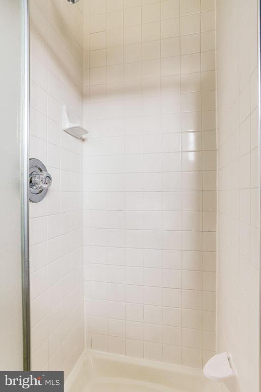 Primary Bathroom (Full) - 221 W ASH RD, STERLING