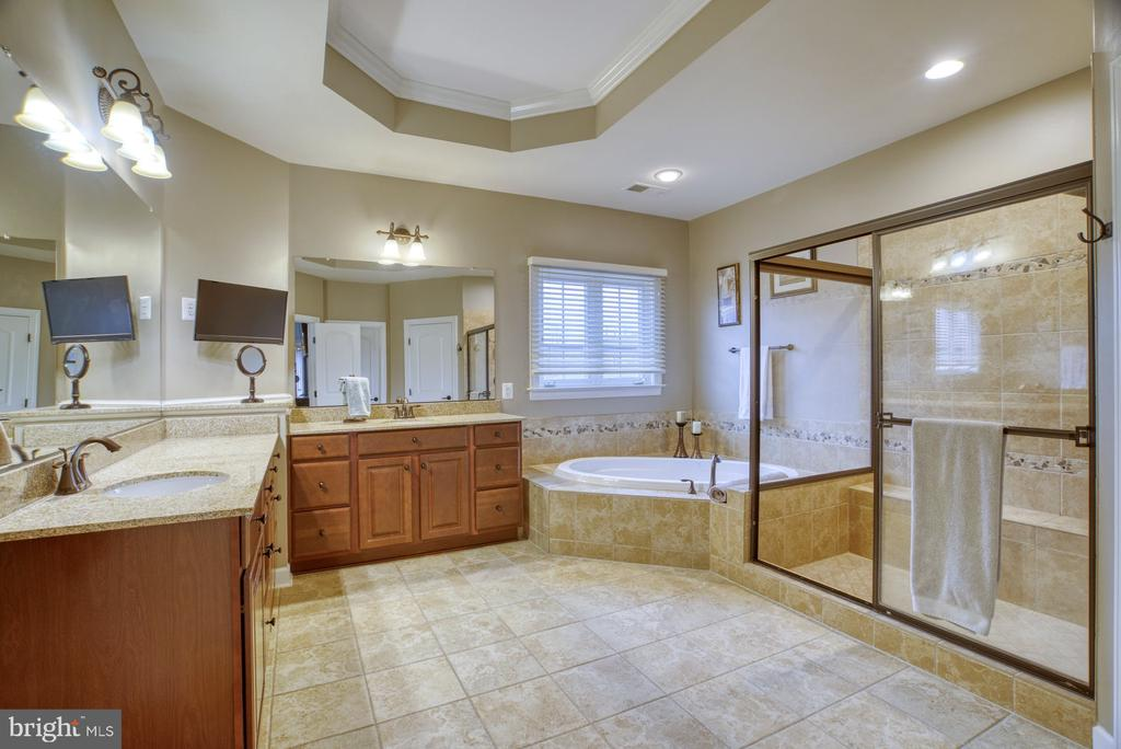 Large primary bath double sinks, tub and shower - 24955 EARLSFORD DRIVE, CHANTILLY