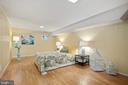 Lower Level Bedroom - 2971 S COLUMBUS ST #A1, ARLINGTON