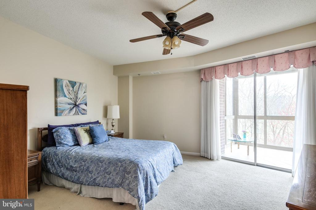 Owners bedroom with walk out to porch - 3100 N LEISURE WORLD BLVD #203, SILVER SPRING