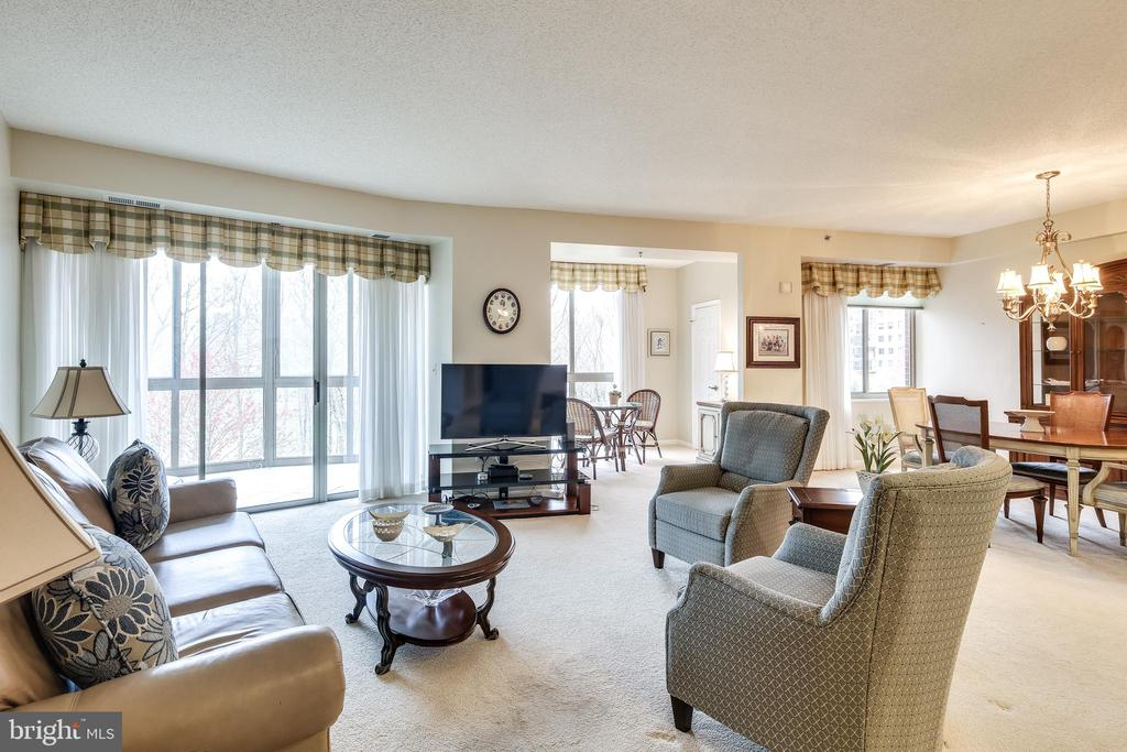 Tons of Sunlight - 3100 N LEISURE WORLD BLVD #203, SILVER SPRING