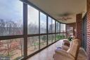 Wait until you see all the nature!!! - 3100 N LEISURE WORLD BLVD #203, SILVER SPRING