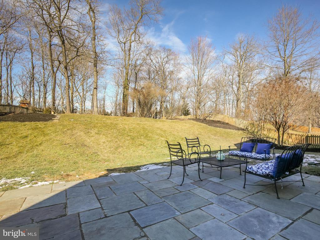 Flagstone patio w/ built in speakers - 43094 ROCKY RIDGE CT, LEESBURG