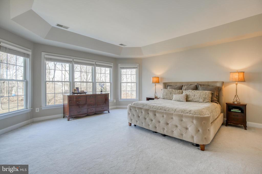 Luxury master bedroom - 43094 ROCKY RIDGE CT, LEESBURG
