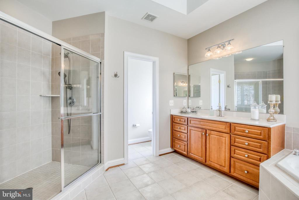 Shower and separate soaking tub - 43094 ROCKY RIDGE CT, LEESBURG