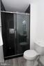 Luxurious Master bathroom - 219 W MEADOWLAND LN, STERLING