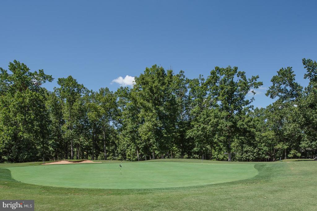 Beautiful golf course views - 121 GOLD RUSH DR, LOCUST GROVE
