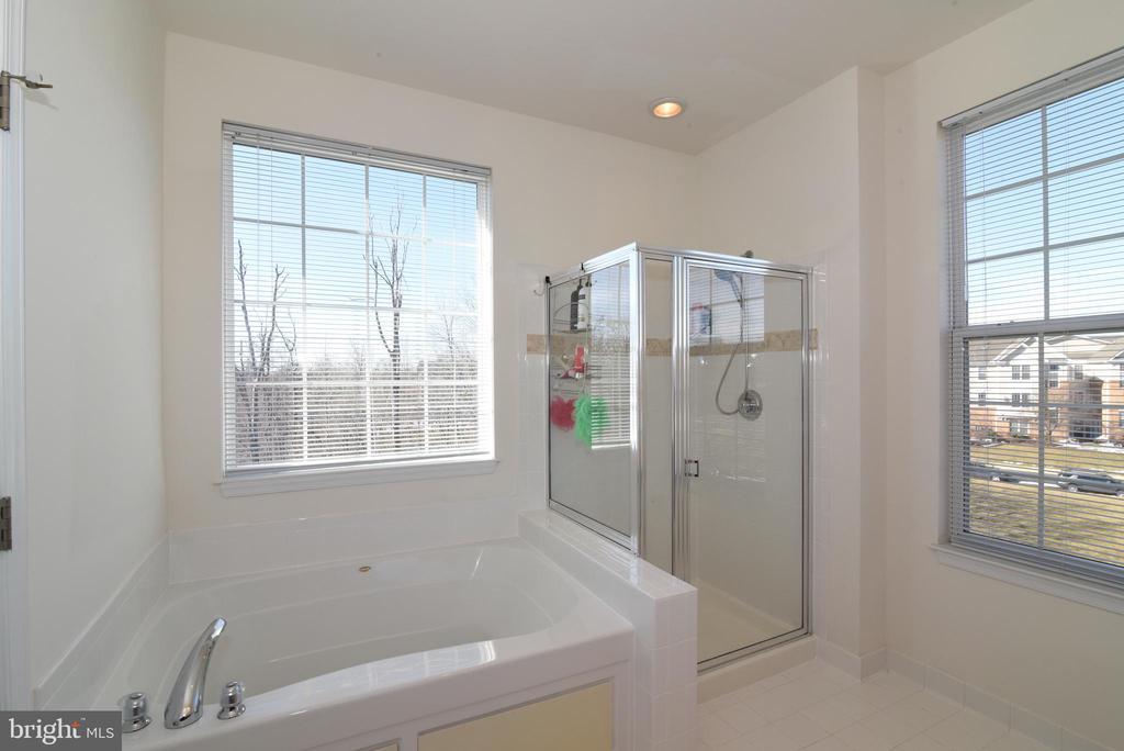Seperate Soaking Tub and Shower - 43415 MADISON RENEE TER #120, ASHBURN