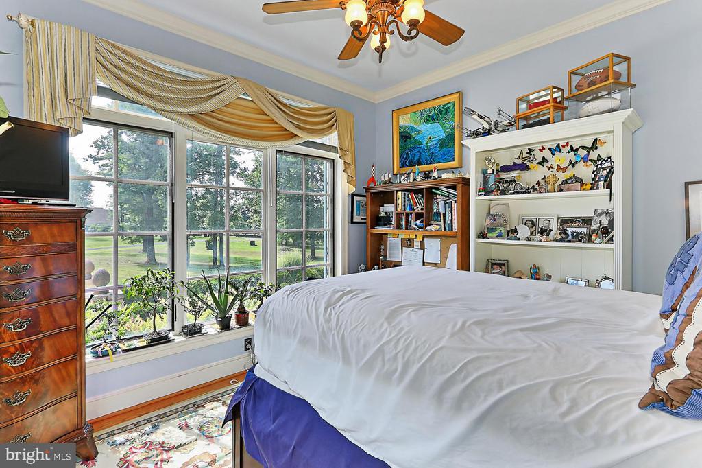 2nd Bedroom in Main Residence - 21281 BELLE GREY LN, UPPERVILLE