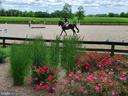 View of Landscaping surround of Outdoor Arena - 21281 BELLE GREY LN, UPPERVILLE