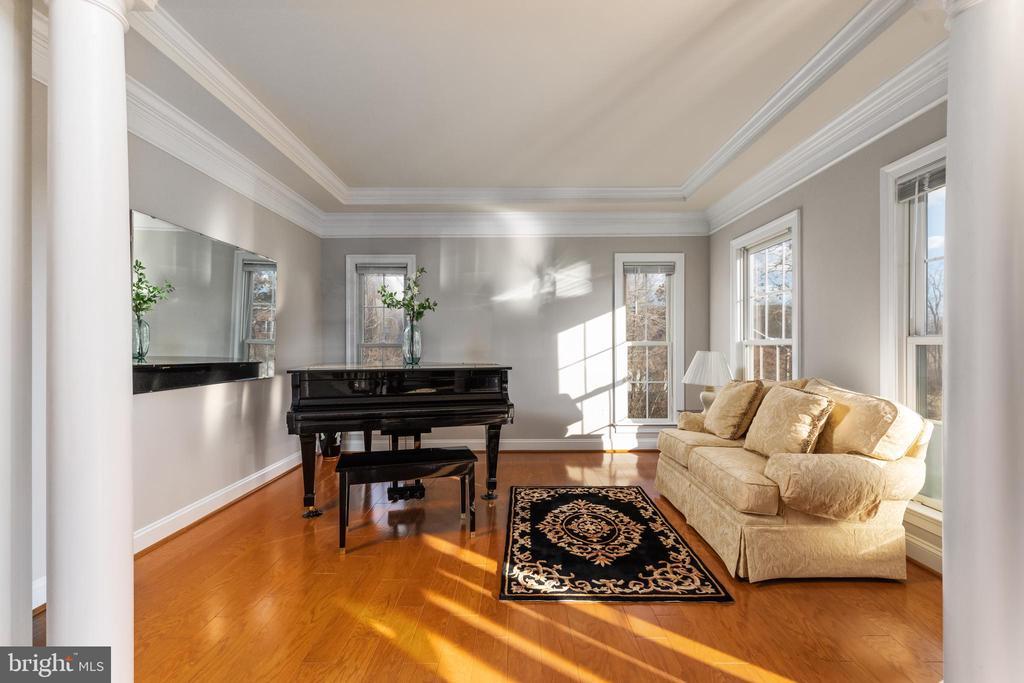 Living Room - 42962 APPALOOSA TRAIL CT, CHANTILLY