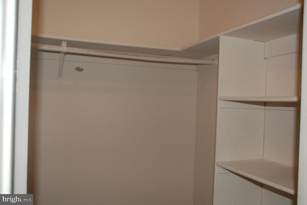 Master bedroom has large lighted walk in closet - 7050 BASSWOOD RD #11, FREDERICK