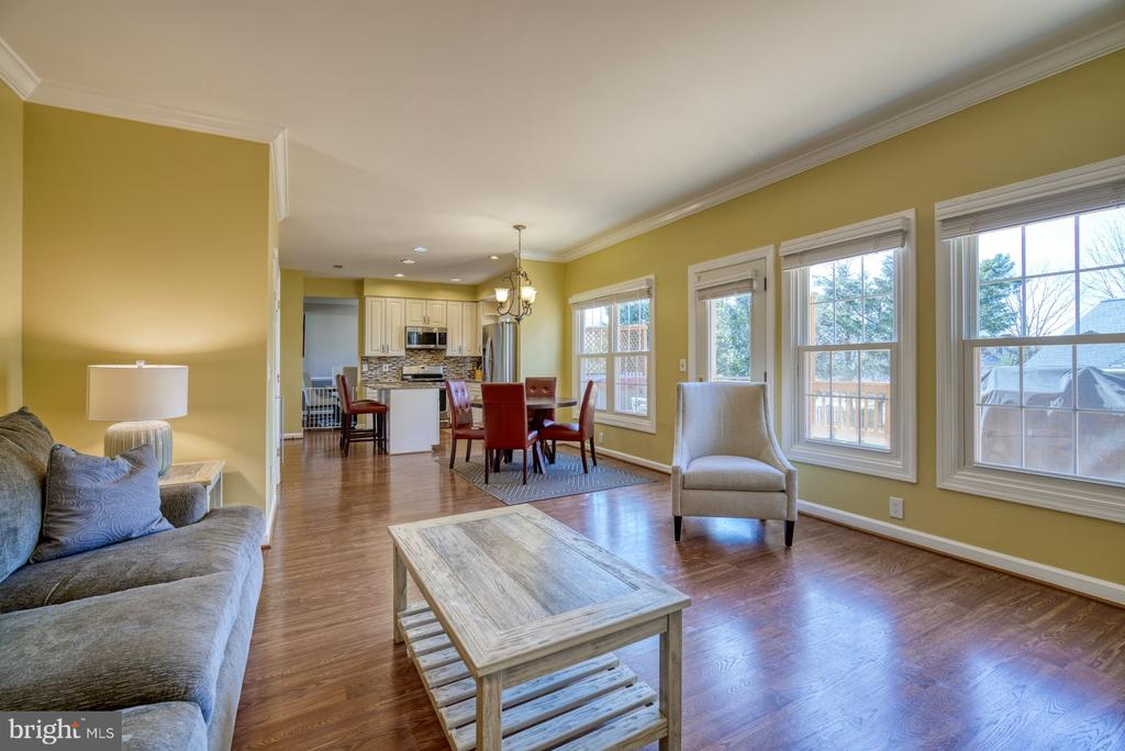 Family Room has LOTS of Natural Light - 43936 BRUCETON MILLS CIR, ASHBURN