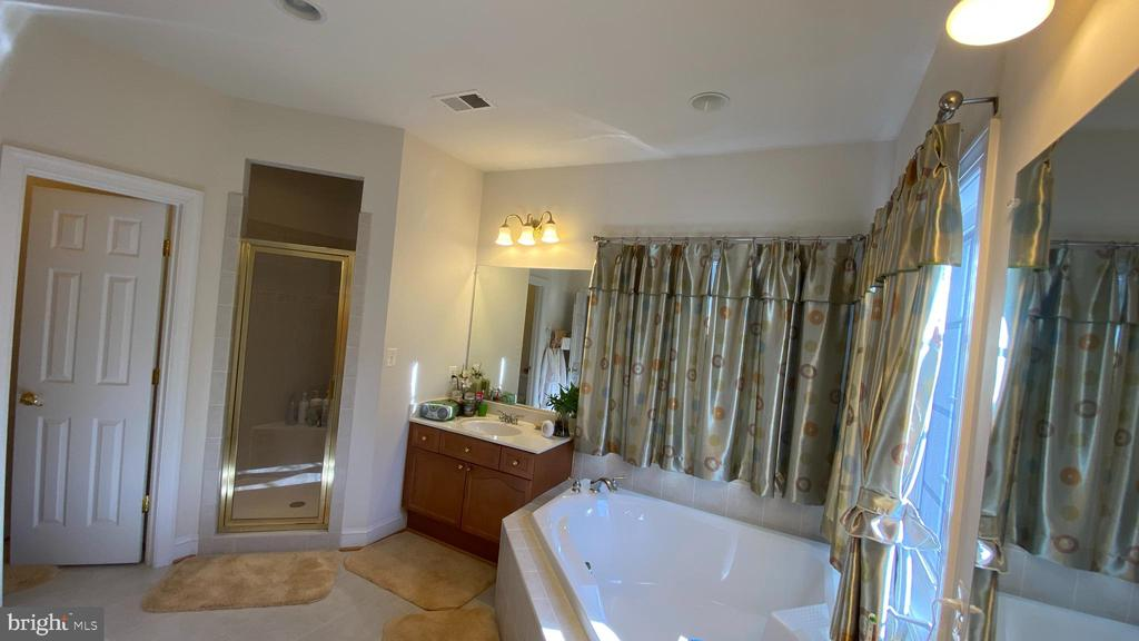 Master Bathroom - 201 GREENHOW CT SE, LEESBURG