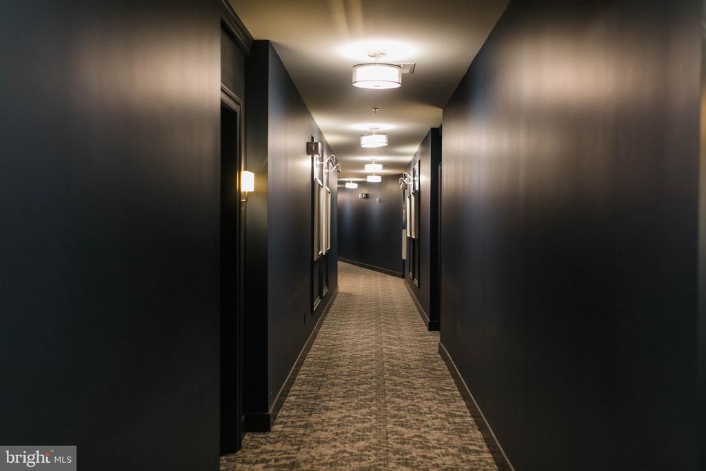 2nd Floor Hall - 9450 SILVER KING CT #203, FAIRFAX