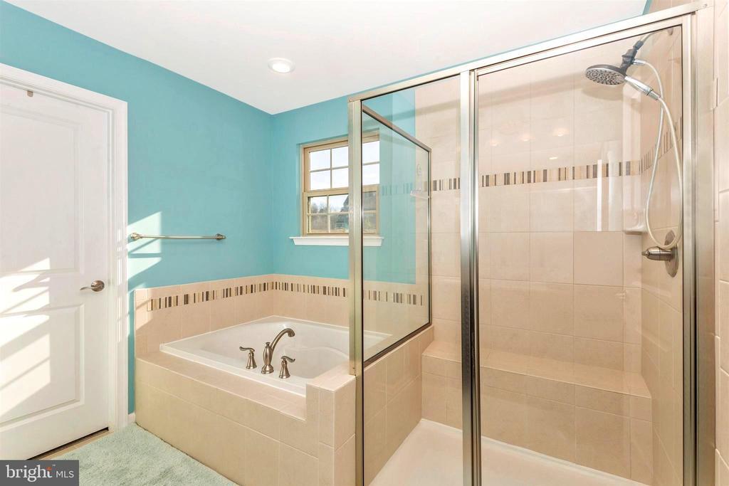 Large soaking tub and oversized shower - 8714 PRESTON DR, FREDERICK
