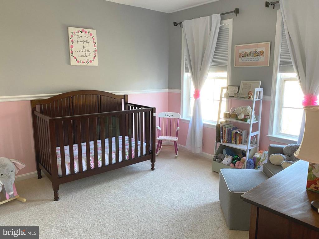 Bedroom  - 2 Windows - Carpet & Double Closet - 14103 RED ROCK CT, GAINESVILLE