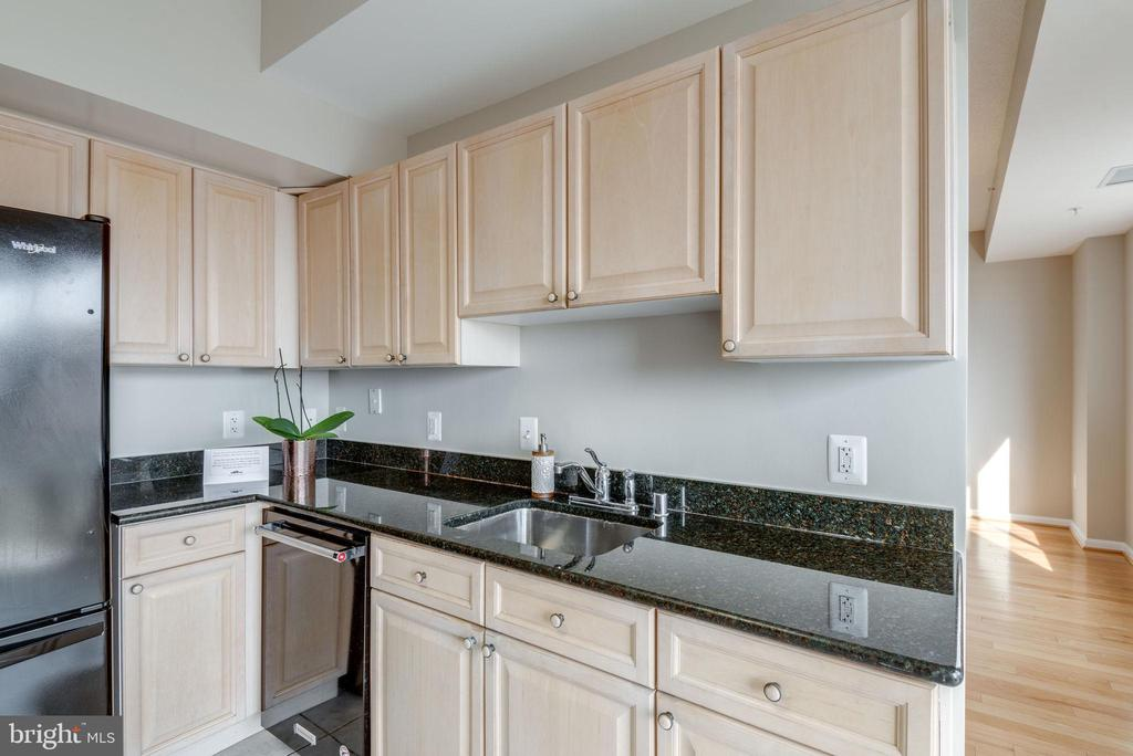 Great counter space for food prep - 19365 CYPRESS RIDGE TER #1007, LEESBURG