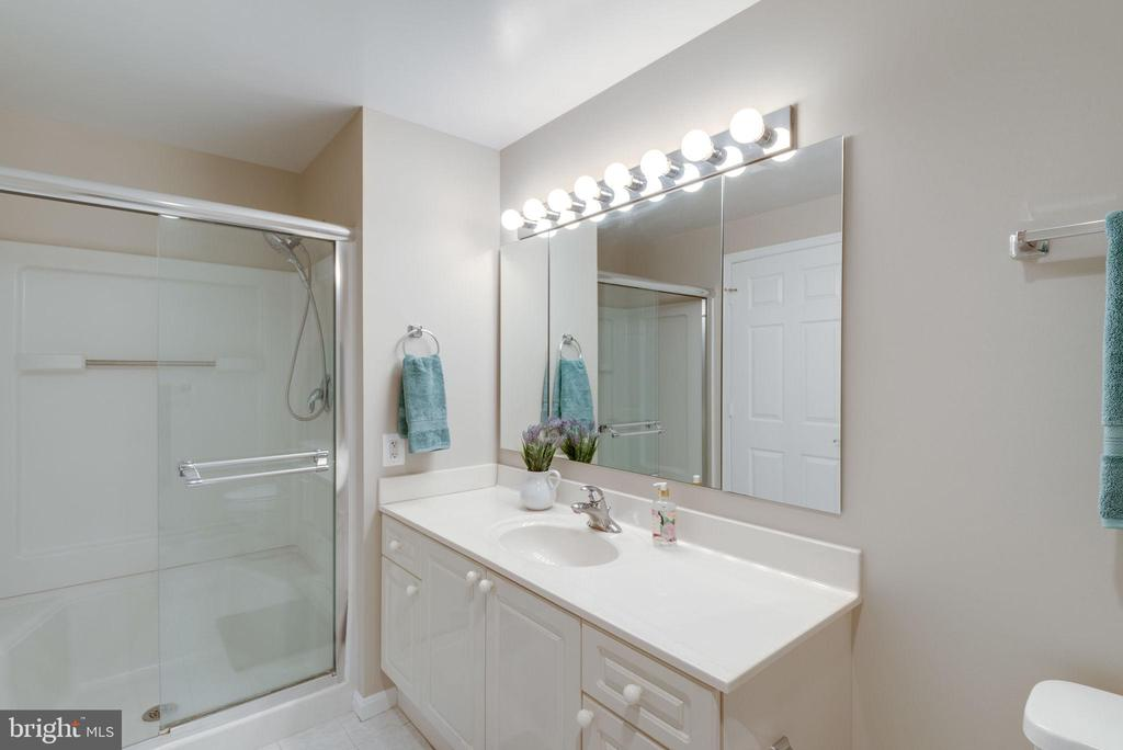 Primary bathroom with walk-in shower and bath - 19365 CYPRESS RIDGE TER #1007, LEESBURG