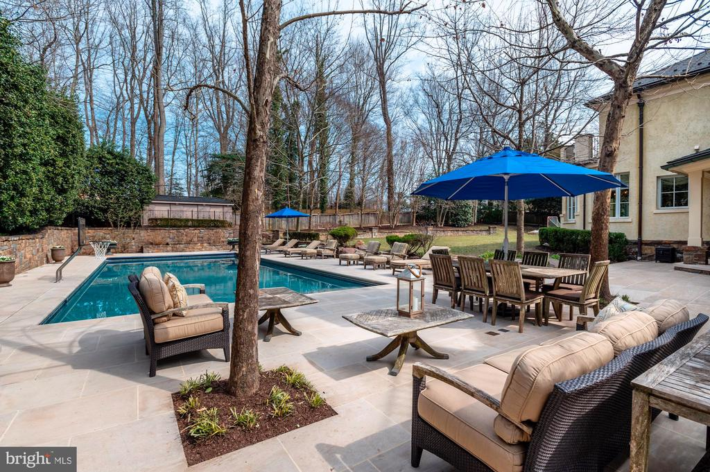 Backyard Oasis - 825 CLINTON PL, MCLEAN