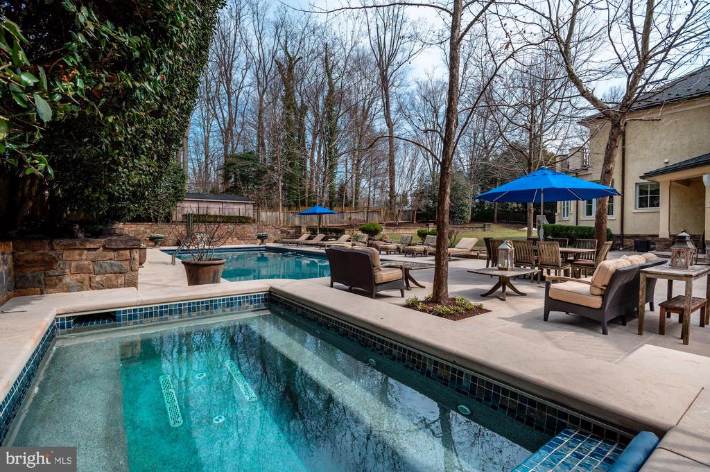 Spa and Luxury Pool - 825 CLINTON PL, MCLEAN